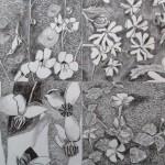 28 Segments, grafitna olovka, papir 18x23,5 cm